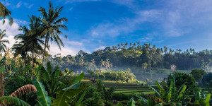 about-bali-tw
